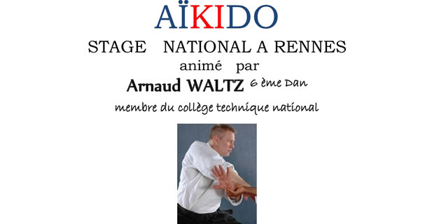Aikido Ligue Bretagne stage national 2016 Arnaud Waltz
