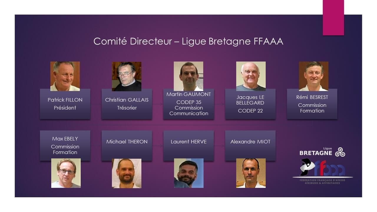 Comité Directeur Ligue Bretagne FFAAA